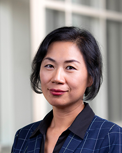 Dr. Ying Shang, Dean of the College of Engineering and Computer Sciences, Professor of Electrical Engineering