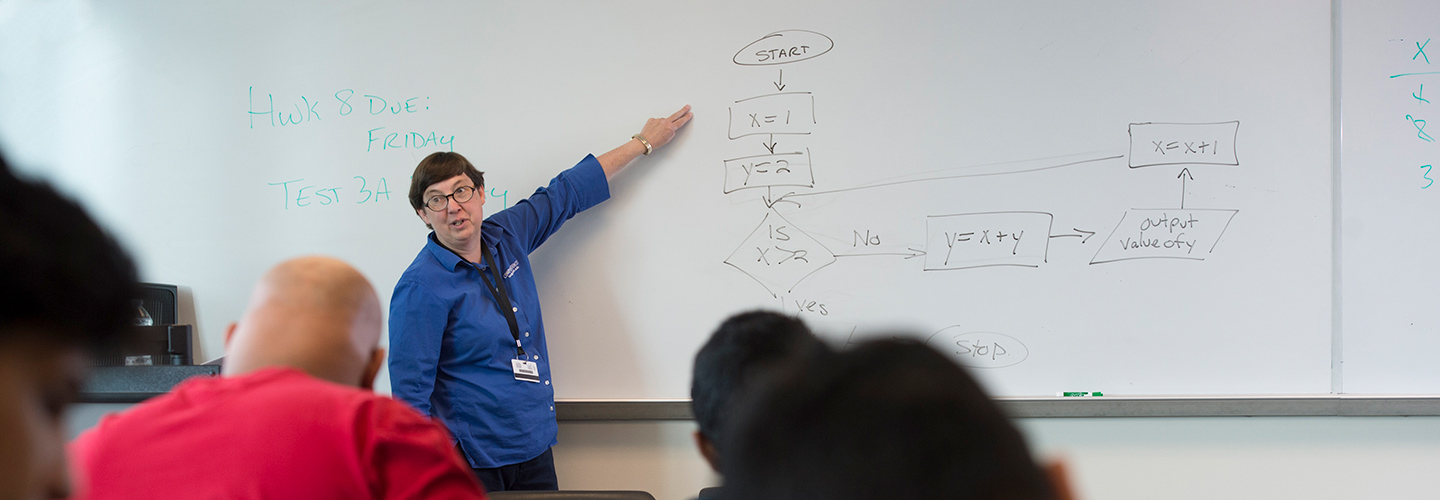 Professor Marie Lee leading classes in Information Systems